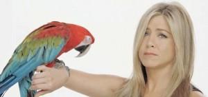 jeniffer aniston_parrot